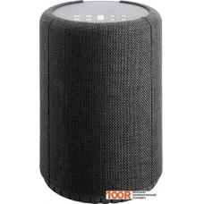 Беспроводная колонка Audio Pro A10 (темно-серый)