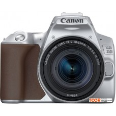 Фотоаппарат Canon EOS 250D Kit 18-55 IS STM (серебристый)