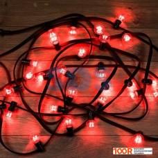 Гирлянда Neon-night LED Galaxy Bulb String [331-322]
