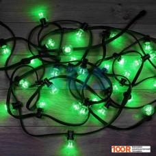 Гирлянда Neon-night LED Galaxy Bulb String [331-324]