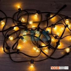 Гирлянда Neon-night LED Galaxy Bulb String [331-326]
