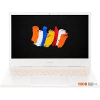 Ноутбук Acer ConceptD 3 CN314-72-74KE NX.C5SER.003