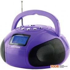 Портативная аудиосистема Hyundai H-PAS100