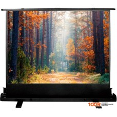 Проекционный экран CACTUS FloorExpert 90x160 CS-PSFLE-160X90
