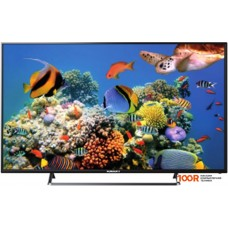 Телевизор Horizont 65LE7113D